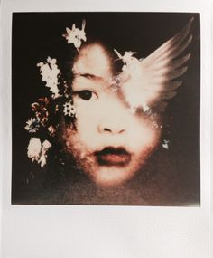 Andrew Millar instant Photography : Photo