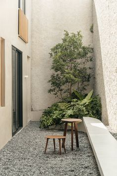 Patio Interior, Interior Exterior, Exterior Design, City Architecture, Contemporary Architecture, Outdoor Spaces, Outdoor Living, Living In Mexico City, Garden Design