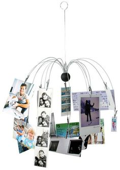 Kikkerland Spider Photo Clip Hanging Mobile: maybe a little more pratical than the crazy expensive light fixture. Spider Pictures, Dorm Design, The Giving Tree, Deco Originale, Hanging Photos, Photo Hanging, Hanging Mobile, Photo Displays, Belle Photo