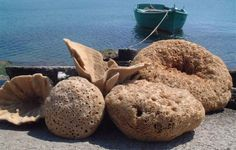 VISIT GREECE  Sponges ©Makryllos Manolis