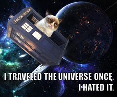 Grumpy Cat meets Doctor Who.