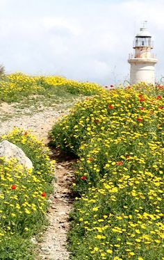 The lighthouse of Pafos, Cyprus   by Burkhard Otto