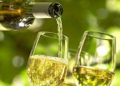 Как приготовить вино из дыни в домашних условиях: простые рецепты и видео