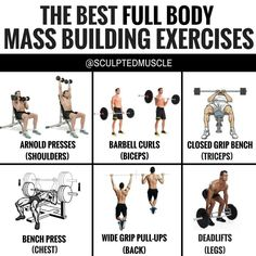 """THE BEST FULL BODY MASS BUILDING EXERCISES by - Contrary to popular belief all exercises are NOT created equally. In fact you can train 7 days per week and post nothing but feel good """"motivational"""" quotes on social media all day long. Best Full Body Workout, Full Body Workout Routine, Workout Routines, Weight Training Workouts, Fun Workouts, Workout Tips, Entrainement Full Body, Mass Building, Muscle Power"""