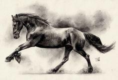 frisian_horse_ii_by_maniaadun-d4ydoyv.jpg (700×476)