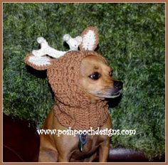 Posh Pooch Designs Dog Clothes: New Pattern Release - Deer Antlers Dog Snood Crochet Pattern For Small Dogs | Posh Pooch Designs