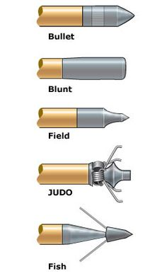 types of arrows head option.  Judo points are fun for stump shooting. Very low penetration.