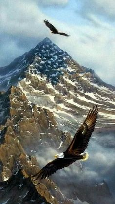 Brazilian Embroidery Rick Kelley On Freedoms Wing - Flying free and high these bald eagles look amazing with these mountains, which look as though the American Flag is presented with the snow, behind them. I Love America, God Bless America, Beautiful Birds, Beautiful Pictures, Land Of The Free, Photos Voyages, Mundo Animal, Scenery, World