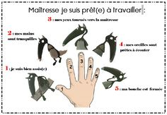"Le give me five du loup - je suis prêt(e) à travailler - the French version for the ""Give me five"" I'm ready to work! Behaviour Management, Classroom Management, Give Me Five, Give It To Me, School Icebreakers, School Organisation, Core French, French Class, French Lessons"