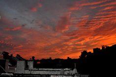 Title:  Orange Sky From Brooklyn Roof   Artist:  Diane Lent   Medium:  Photograph - Photography