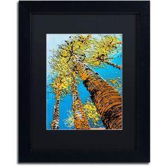 Trademark Fine Art Aspen Sky II Canvas Art by Roderick Stevens, Black Matte, Black Frame, Size: 16 x 20