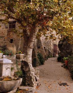 ♔ Tourtour ~ Provence Alpes ~ Cote-dAzur ~ France