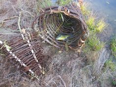 how to make a small fish trap