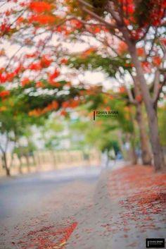 Niraj Niraj Blur Image Background, Background Wallpaper For Photoshop, Blur Background Photography, Photo Background Editor, Photo Background Images Hd, Picsart Background, Photo Backgrounds, Editing Background, Best Hd Background