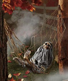 Interactive Skeleton in Hammock spooky Halloween decoration sound-activated. Buying this today for part my Halloween prop decor! Halloween Prop, Halloween Skeleton Decorations, Pirate Halloween, Spooky Decor, Outdoor Halloween, Holidays Halloween, Halloween Crafts, Halloween Stuff, Haunted Halloween