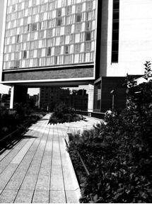 Highline Park  enter from Gansevoort St  and Washingtoin St  New York