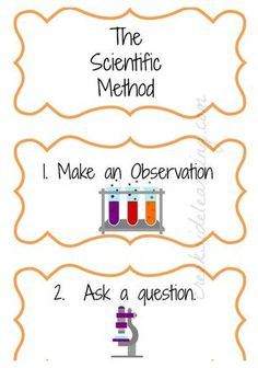 what is the second step in the scientific method