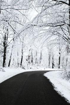 Beautiful winter scenery