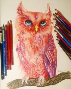 Red Owl by StarlightPhoenixDS.deviantart.com on @DeviantArt