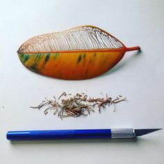 Carved and Embroidered Leaves by Hillary Fayle Dry Leaf Art, Leaf Skeleton, Embroidered Leaves, Colossal Art, Japanese Flowers, Sticks And Stones, Painted Leaves, Arte Floral, Nature Crafts