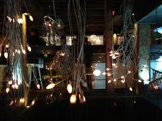 #light #the argyle