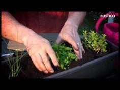 Faire une jardinière d'aromatiques pour une exposition peu ensoleillée - YouTube