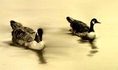 Ducks at Putney Bridge, London (Ink)