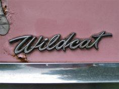 1964 Buick LeSabre Wildcat Wagon by Sander Toonen
