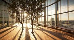 Một cuộc cách mạng thiết kế nhằm kết nối không gian sống, làm việc với thế giới tự nhiên. Những tòa nhà sẽ trở thành nơi mọi người cảm nhận và hoạt động tốt hơn với thiết kế Biophilic. Vậy Biophilic là gì? Mời bạn đọc cùng chúng tôi tìm hiểu nhé!