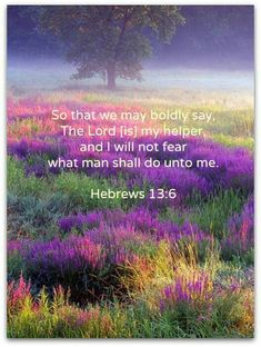 Hebrews (KJV) 6 So that we may boldly say, The Lord is my helper, and I will not fear what man shall do unto me. Favorite Bible Verses, Bible Verses Quotes, Bible Scriptures, Scripture Verses, Faith Quotes, Christian Faith, Christian Quotes, Christ In Me, Jesus Christ