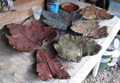 This is a new twist on my older Pin about making garden pavers out of large leaves - super easy and you can tint them with concrete stain!--I think this would be a cool base to make a water fountain, with water dripping from leaf to leaf :-) Holla! Cement Art, Concrete Crafts, Concrete Art, Concrete Projects, Stained Concrete, How To Color Concrete, Garden Pavers, Concrete Garden, Concrete Planters