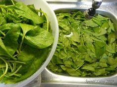 Špenát a jeho uskladnenie (fotopostup) - recept | Varecha.sk Lettuce, Spinach, Vegetables, Food, Essen, Vegetable Recipes, Meals, Yemek, Salads