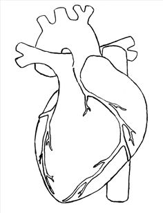 15+ Heart Drawing Ideas For Love