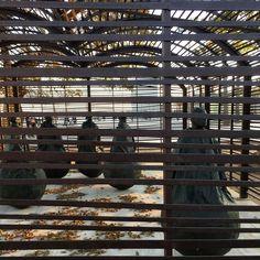 Men on words. #art #sculpture #contemporaryart #contemporary #igers #igerseu #igersbarcelona