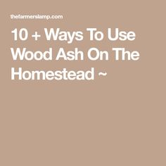 10 + Ways To Use Wood Ash On The Homestead ~