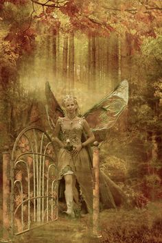 Gateway to Fairy Realm...