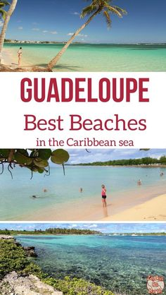 Caribbean island Gua Caribbean island Guadeloupe - Best beaches in Guadeloupe in photos - waves sand palm trees Caribbean Vacations, Caribbean Sea, Beach Vacations, Romantic Vacations, Romantic Travel, Beach Fun, Beach Trip, Beach Travel, Places To Travel