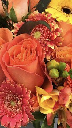 Snapdragon Flowers, Gladiolus Flower, Gerbera Flower, Tulips Flowers, All Flowers, Flowers Nature, Pretty Flowers, Planting Flowers, Orange Wedding Flowers
