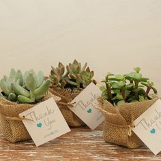 12 DIY Succulent Favors Thank You Tag ANY COLOR by thefavorbox