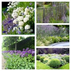 Portfolio jardin