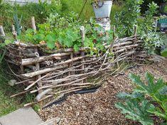 Bilderesultat for bed i skråning Homesteading, Lag, Plants, Outdoor, Raised Gardens, Gardening, Raised Beds, Permaculture, Outdoors