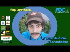 Vlog cannabico| El jardín de Fabini  y Cannabolitas con @playsmoked