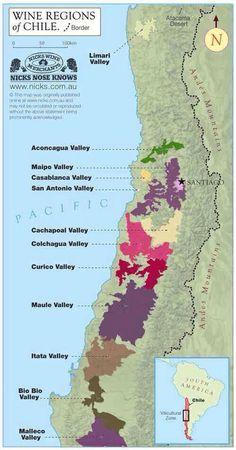 Anatomía del viñedo chileno @hugocorales