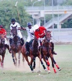 The NSK Argungu Polo Tournament continued as Zaria West Stream continued their winning run as they whipped Maiduguri El-kanemi 6-0 in the battle for the Emirs Cup. Also IGP Strikers slumped to yet another defeat losing 3  11/2 to 1212/Dogonyaro Farms also in the Emirs Cup. While Titan/H.Hago beat Keffi Iyatu Farms 4  31/2 in the race for the Shehu Kangiwa Cup.  In the meantime the Secretary General of the Nigeria Polo Federation (NPF) Baba Kyari has said the Argungu polo tournament would…