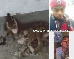 UPDATE: The two thugs are not the abusers! It seems that the video is from Russia and it happened in 2010. The boys just shared it on their pages claiming that they are the ones that destroyed the dog. When animal activists started questioning them they just went along with it and posted other photos of abused animals! Several photos are being shared intentionally instigating to animal abuse and animal cruelty!