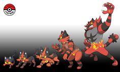 725 - 727 Litten Line by InProgressPokemon Pokemon Fake, Pokemon Alola, Pokemon Memes, Pokemon Fan Art, Pokemon Fusion, Papercraft Pokemon, Pokemon Eevee Evolutions, Pokemon Breeds, Pokemon Starters