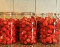Zavařené jahody ve vlastní šťávě - cítíte tu vůni? Zkuste si uvařit chuťovku podle receptu s fotkami. Za 45 minut podáváme. Máte hlad? Jdeme na to!
