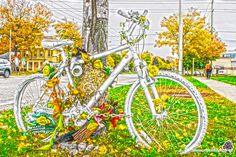 This is a tribute to Bill Seely, a cyclist killed while riding. And sad. Ride In Peace Ontario, Fair Grounds, Sad, Peace, Bike, London, Photography, Travel, Beautiful