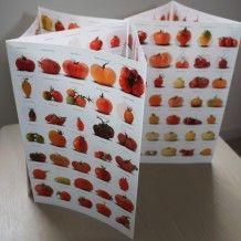 Bio, Cube, Tray, Holiday Decor, Tomato Juice, Ranch Dip, Beefsteak Tomato, Trays, Board