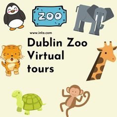Why not virtually visit Dublin Zoo, Irish Museums and others around the world. I know our lockdown is coming to an end, but there are still so many places you can't visit in  real life! We thought the children might enjoy some virtual tours.  . Dublin Zoo, Visit Dublin, Preschool Furniture, Sensory Rooms, Kids Table And Chairs, Primary Resources, Sand And Water, Primary School, Virtual Tour